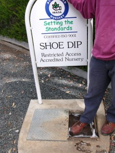 boot dip signage
