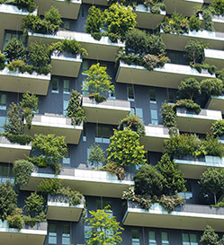 Green_Cities